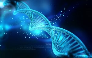 Galli-DNA-Microarray-Scanner-hybridization-Ovens