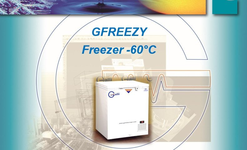 gfreezy-congelatore-60-gradi-galli